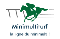 minimultiturf.com